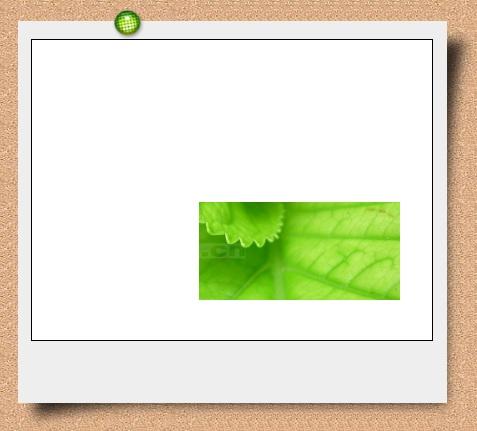 花样边框制作工具介绍(2)